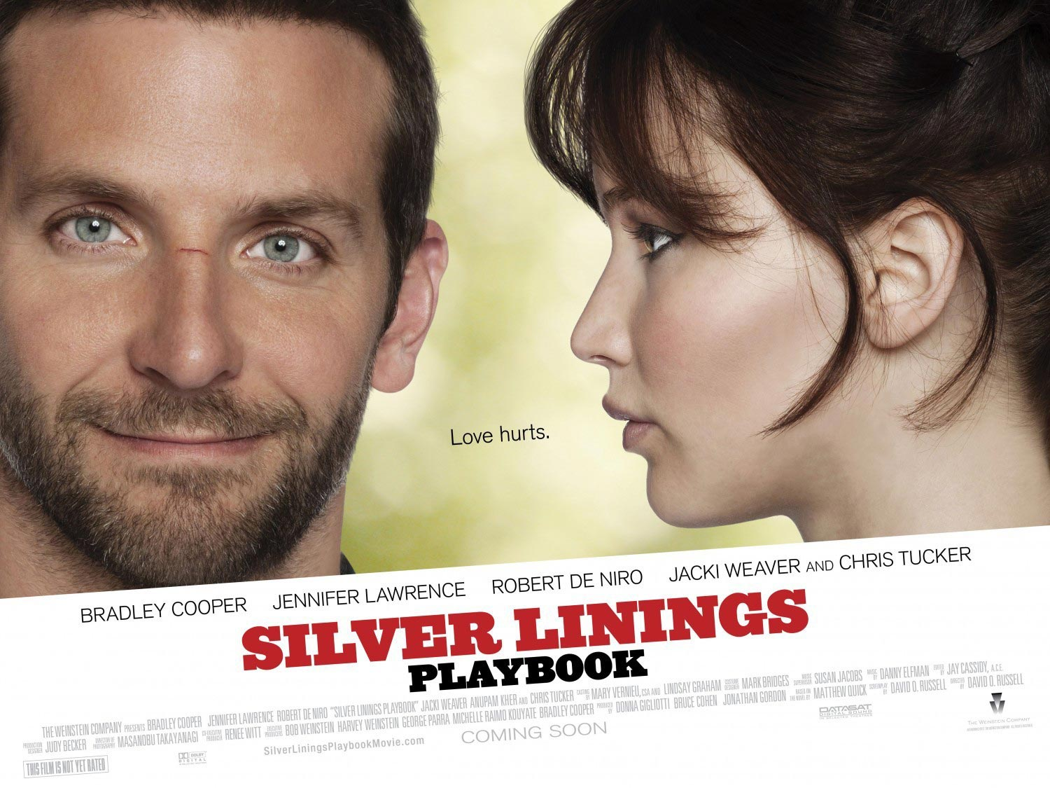Silver-Linings-Playbook-poster1